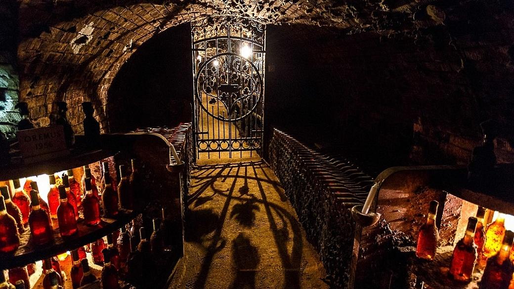 Oremus wine cellar, Tokaji Hungary