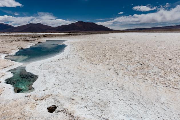 Tolar Grande Salt Flat Tour from Salta Argentina