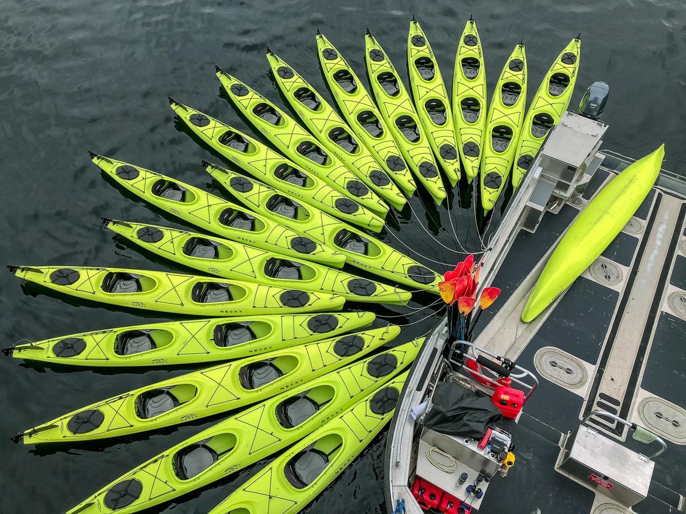 UnCruise kayak fantail during an adventure cruise